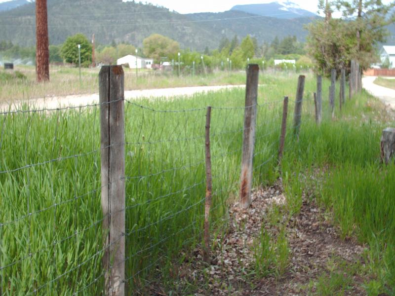 fence-3