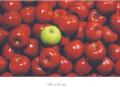 green-apple-among-red-ones