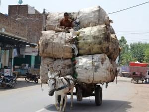 overloaded donkey cart