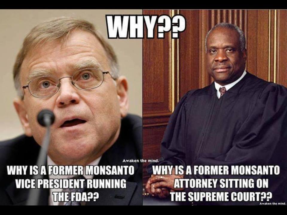 Monsanto revolving door