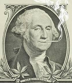 WashingtonToke