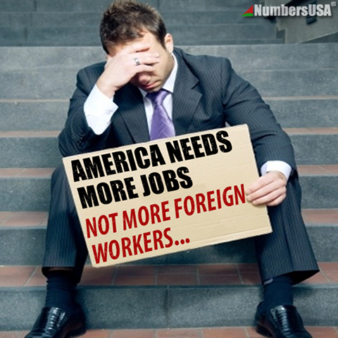 america needs jobs not foreign workers