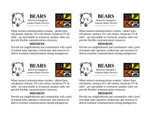 BEARS emergency cards