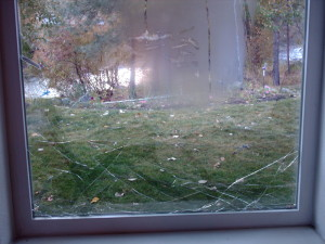 broken window lower